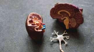 Chore nerki - czynnik ryzyka przy koronawirusie